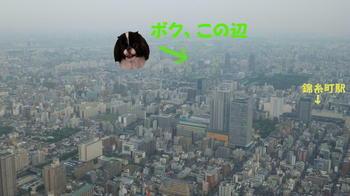 20120608-7.JPG